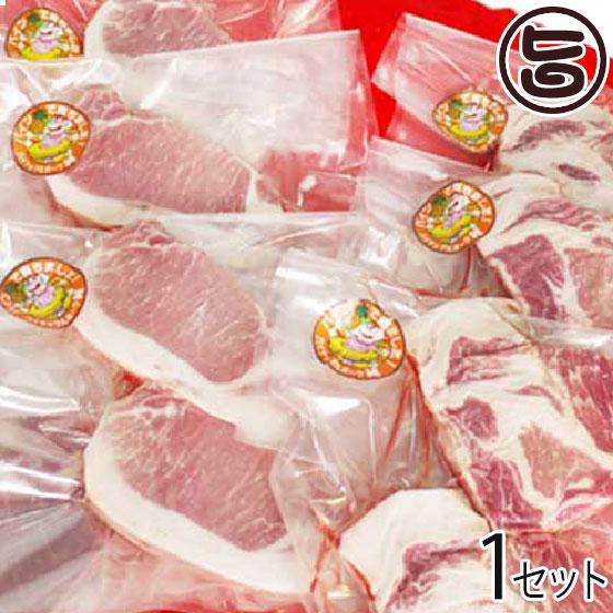 ギフト 特撰ギフト パイナップルポーク 純 特撰ギフト ハンバーグ・ロース ギフト・肩ロース 人気・ヒレ肉セット ギフトBOX入り 条件付送料無料 沖縄 人気 高級 肉, shocora Lady:f358dc10 --- sunward.msk.ru