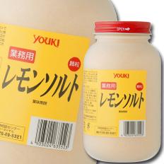 【送料無料】ユウキ食品 レモンソルト650g×2ケース(全24本)