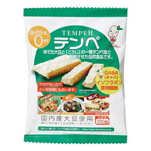 国内産大豆100%使用 公式サイト 未使用 クセがなく食べやすい テンペ 100g レトルト オーサワジャパン