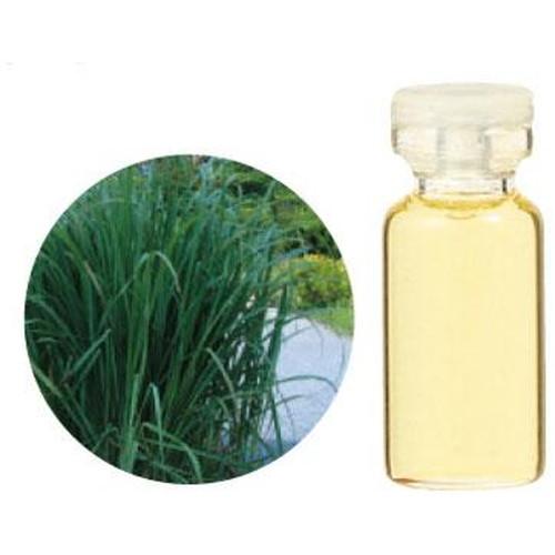 レモングラス(西インド型)精油100ml【受注生産】【PROUSE】生活の木