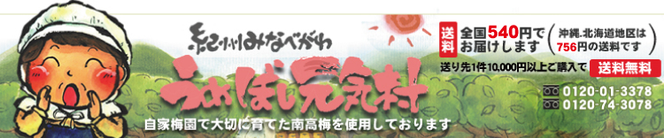 紀州・うめぼし元気村:南高梅の梅干しを産地直送。自家梅園産手づくり梅干し・梅製品・梅肉エキス