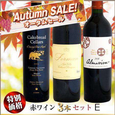 【オータムセール】特別価格 赤ワイン 3本セット E