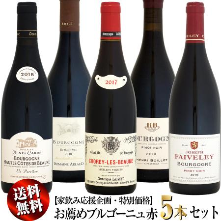 家飲み応援 特別価格 クール送料無料 直輸入品激安 お薦めブルゴーニュ クリアランスsale 期間限定 5本セット 赤ワイン