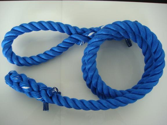 トレーニングロープ/カラーロープ/ターザンロープ/登り綱/送料無料/リプロン製ターザンロープ(登り綱) 青 30mm×4M 10000244