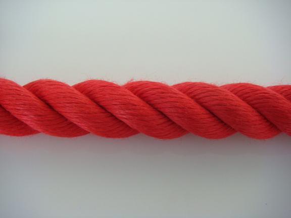 カラーロープ ご注文で当日配送 赤 ロープ 国内在庫 リプロンカラーロープ 36mm 切売り