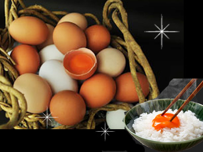 選べる 当店人気No.1 産みたて卵を指定日に合わせて発送 ギフト24個入プレゼント 贈り物 おくりもの 卵かけ 卵ご飯 卵かけご飯 たまごかけ 卵かけ御飯 たまごかけごはん 醤油にぴったり たまごかけご飯 ごはん たまごかけ御飯 18-24送料無料 小林ゴールドエッグ お金を節約 卵 たまごのソムリエ 記念日