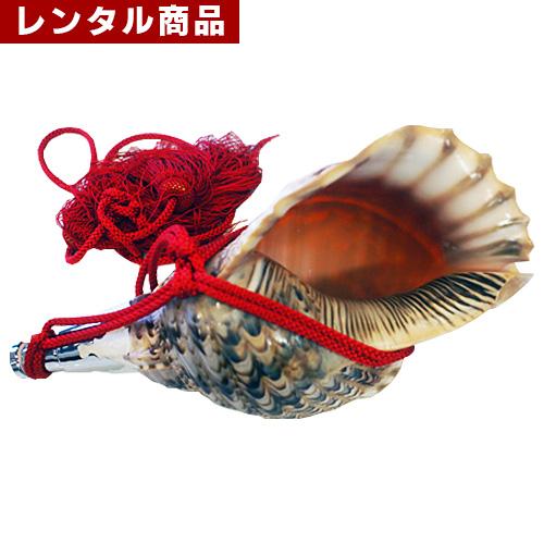 【レンタル】 ほら貝
