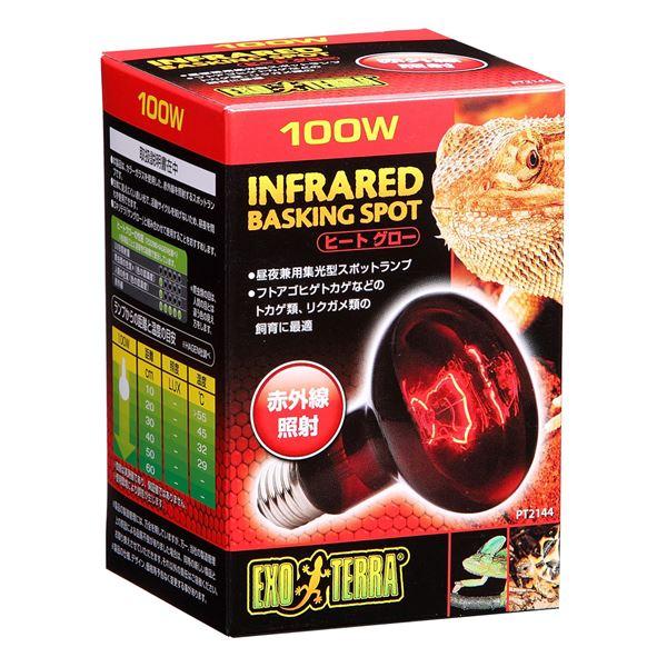 ジェックス ヒートグロー赤外線照射ランプ 100W PT2144 【ペット用品】