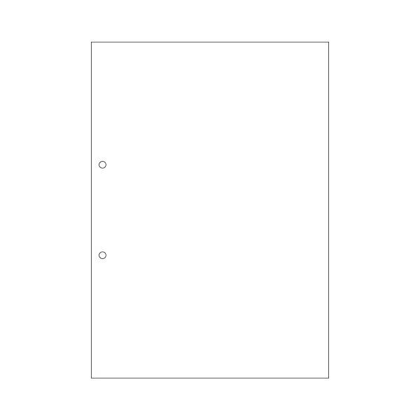 (まとめ) ヒサゴ マルチプリンター帳票(エコノミープライス) A4 白紙 2穴 BPE2001 1箱(2500枚) 【×4セット】