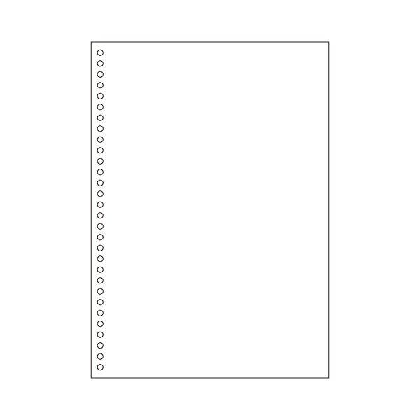 (まとめ) ヒサゴ マルチプリンター帳票(エコノミープライス) A4 白紙 30穴 BPE2049 1箱(2500枚) 【×4セット】