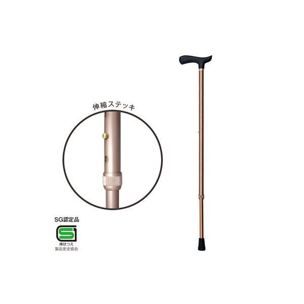 (業務用セット) RQステッキ 伸縮ステッキ/エコノミータイプ RQS-E101BR ブラウン【×5セット】