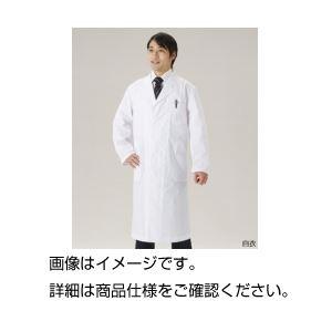 (まとめ)白衣 男子シングル LL【×3セット】