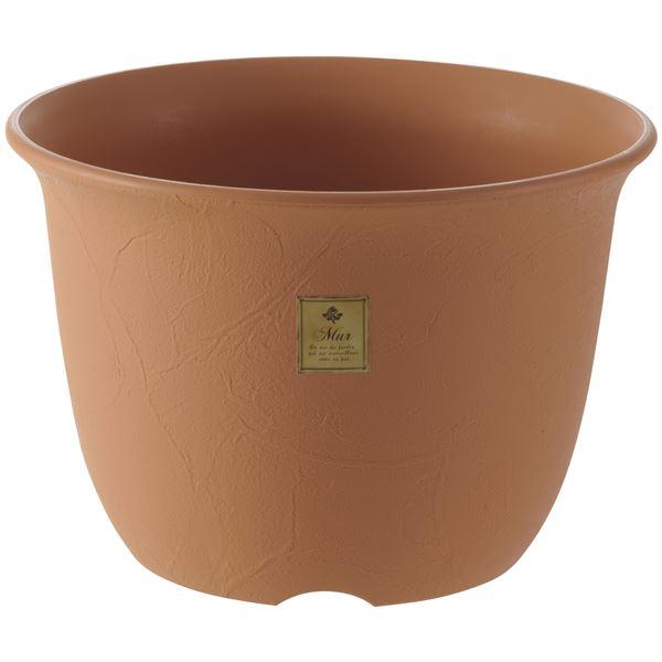 (まとめ) 植木鉢/ポット 【6号 ブラウン】 プラスチック製 ガーデニング用品 園芸 『ムール』 【×60個セット】