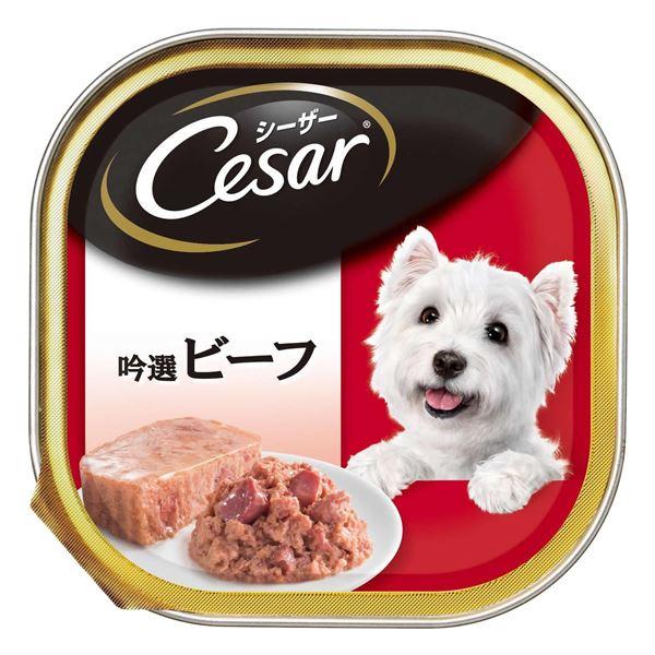(まとめ)シーザー 吟選ビーフ 100g【×96セット】【ペット用品・犬用フード】