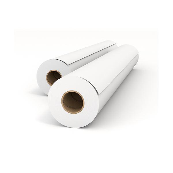 (まとめ)オセ エコノミー普通紙 A1ロール594mm×50m IPS550B 1箱(2本)【×2セット】