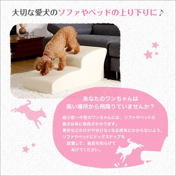 日本製ドッグステップPVCレザー、犬用階段2段タイプ【lonis-レーニス-】 ブラック【代引不可】