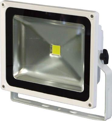 [日動]日動 LEDエコナイター50 LEN50DESW[工事用品 作業灯・照明用品 投光器 日動工業(株)]【TC】【TN】