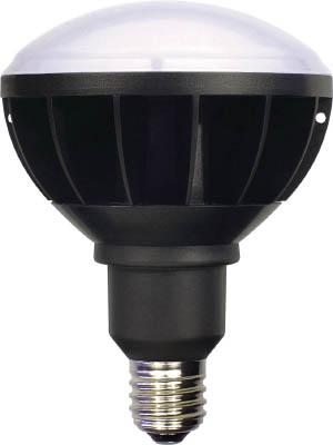 [日動]日動 LED大型電球 エコビッグ50 L50WE395000K[工事用品 作業灯・照明用品 投光器 日動工業(株)]【TC】【TN】【10P25Oct14】