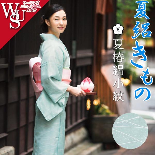 和服きもの 絽小紋 女性着物 K-3682 斜線に露 フードサービス 旅館 中居 料亭
