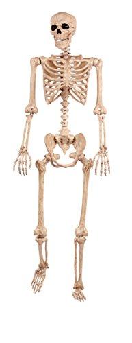 Lifesize Pose N Stay Skeleton LifeSizeのスケルトンポーズN滞在♪ハロウィン♪サイズ:[cb]
