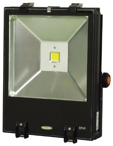日動 投光器 エコナイター70 LEN-70D-ES-W (昼光色)
