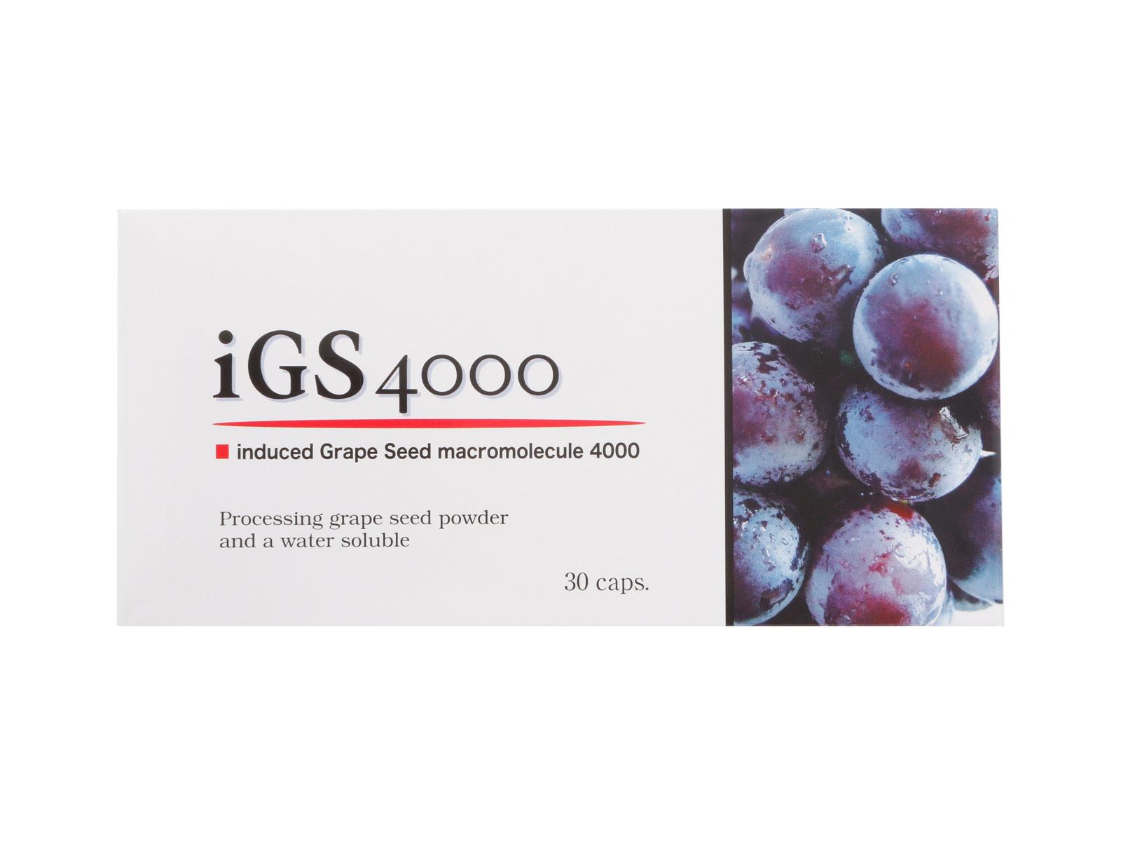 iGS4000