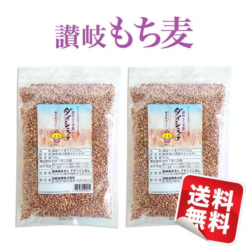 【国産】 讃岐もち麦 ダイシモチ500g×2袋セット 食物繊維豊富!★日本全国★お試しにも最適!買いまわりにもオススメ!