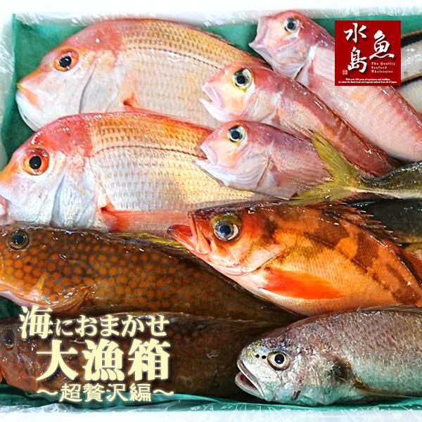 【送料無料】厳選 日本海の鮮魚セット「海におまかせ・大漁箱 超贅沢編」大満足詰め合わせ