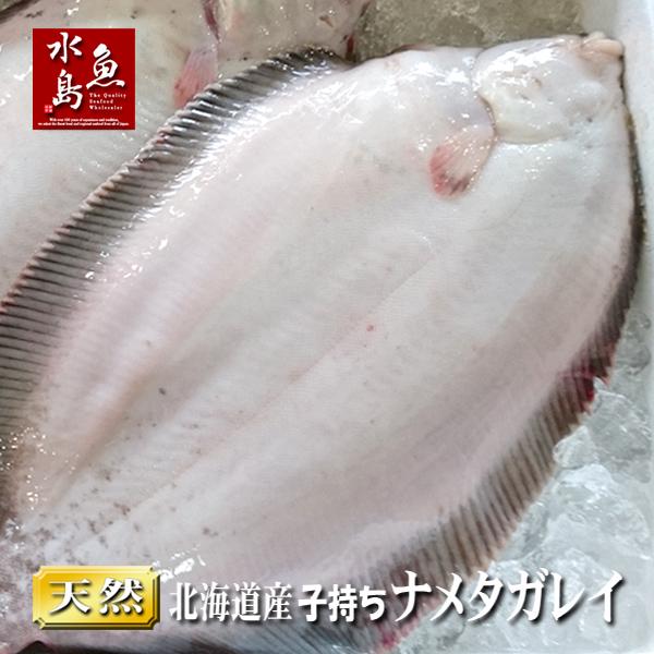 【送料無料】北海道産 天然 子持ちナメタガレイ 1.0~1.3kg 3尾(生冷凍)