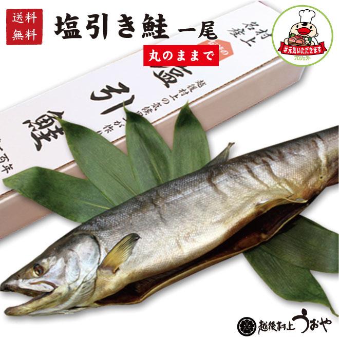 【送料無料】塩引鮭一尾(生時4.2kg)丸のまま【#元気いただきますプロジェクト】