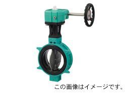 巴バルブ 773Z-1J (ロックレバー式・40~125mm) 【型式:773Z-1J-65 01000723】[新品]