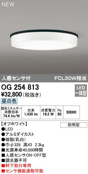 オーデリック 外構用照明 エクステリアライト ダウンライト【OG 254 813】OG254813[新品]