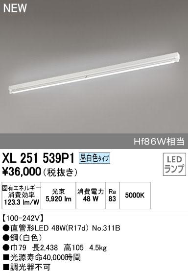 オーデリック 店舗施設用 ベースライト 【XL 251 539P1】XL251539P1[新品]