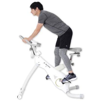 スタンディングバイク BK1700 アルインコ エアロバイク ダイエット器具 トレーニング フィットネスバイク スピンバイク フィットネス 健康器具 自転車
