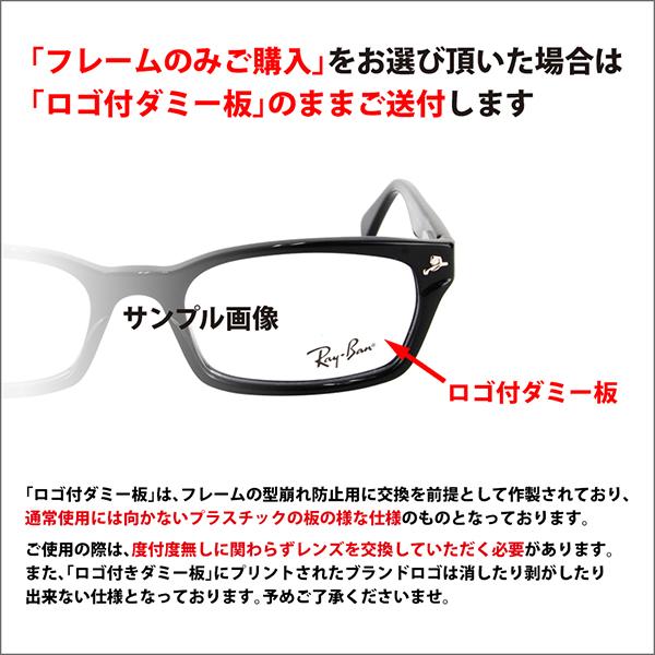 雷朋眼镜 RX8731D1152 55 雷朋亚洲模型尼龙钛