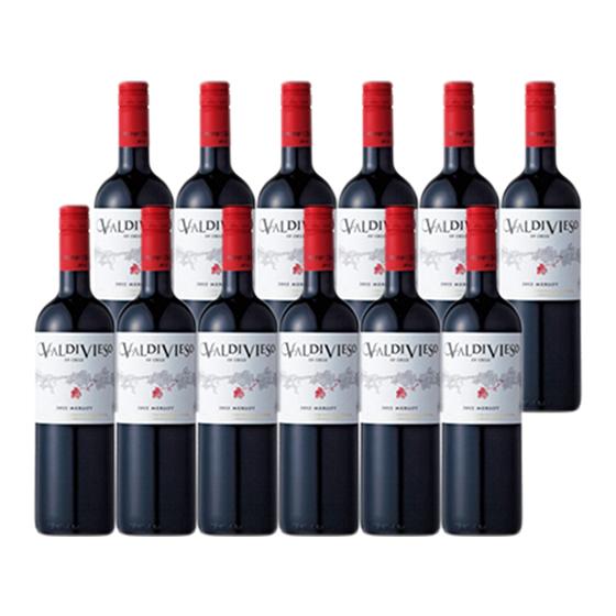 バルディビエソ メルロー  750ml 12本 1ケースチリ 赤ワイン送料無料 一部地域を除く【業務用】