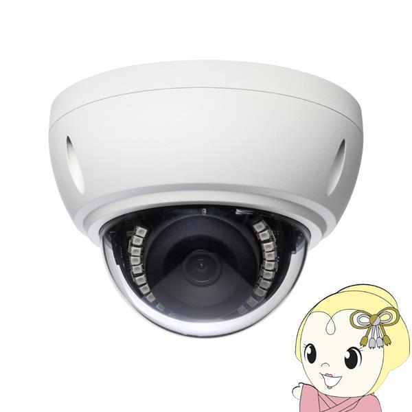 【キャッシュレス5%還元】Viewla IPC-19 フルHDドーム型 IPネットワークカメラ【/srm】