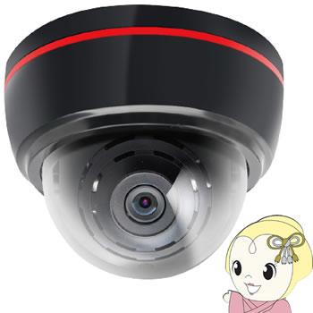 【キャッシュレス5%還元】INBYTE SDカードに記録する防犯カメラ LUKAS LK-790【/srm】