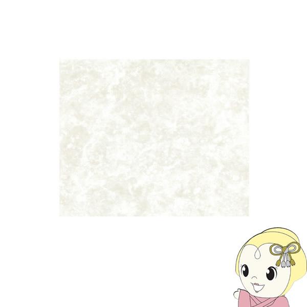 【メーカー直送】NAGATA[ECO Kuratetsu Floor]塩ビタイルカーペット12枚入(500×500×4.5mm)Marble DSS-101【smtb-k】【ky】