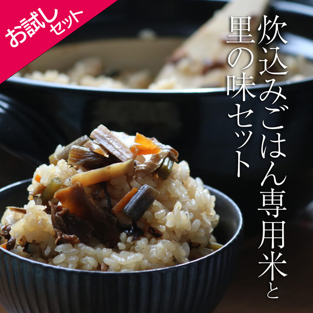もっちもちの食感 もち米入りの山菜炊込みごはん 送料込 炊込みごはん専用米お試しセットB もち米入り 超特価 数量限定