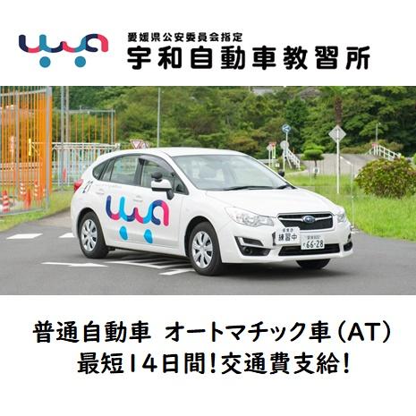 普通自動車免許 オートマチック車 AT車 平成31年4月3日~令和元年7月27日※オフシーズン入校限定 合宿免許愛媛県西予市