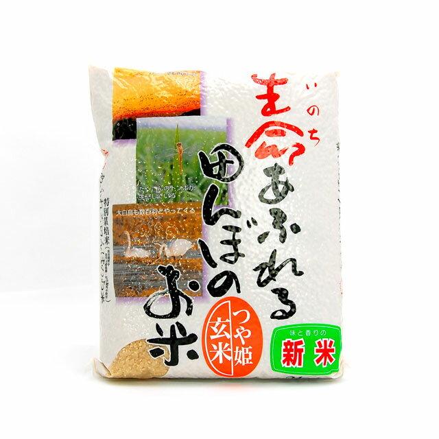 令和2年産 新米 最新 生命あふれる田んぼのお米 2kg 玄米 つや姫 商品