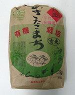 井手さんのお米 芽吹き小町籾発芽玄米 30kg