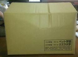 送料無料 コリンウズラ用フード ドリームコリン 20kg箱入り