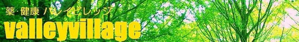 バレイビレッジ:バレイビレッジ〜谷村医療器運営ヘルスケアマーケット