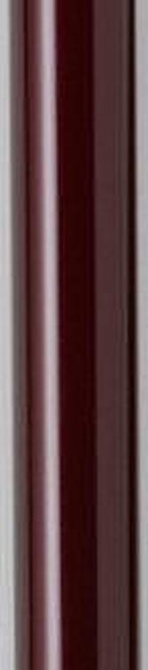電動伸縮杖伸助さんワインレッド JAN4941049822702