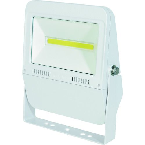 日動 LED投光器 フラットライト30W 常設用 本体白 昼白色 4500Lm サージププロテクター付 1台
