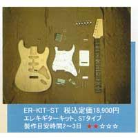 【送料無料】オリジナルエレキギターST製作キット