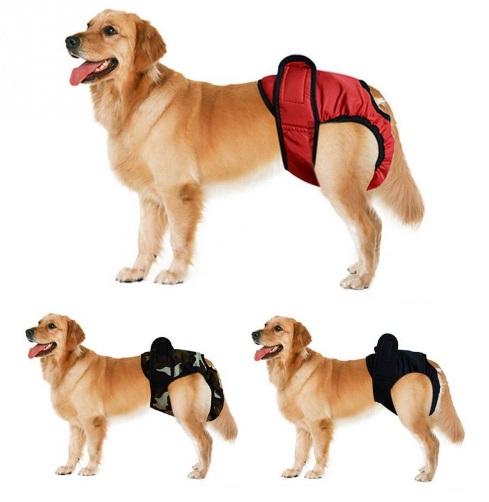 犬用 サニタリーパンツ 《レッド》 Lサイズ マナーパンツ 生理パンツ SANPA【YDKG-kd】【smtb-KD】[ペット][定形外郵便、、代引不可]