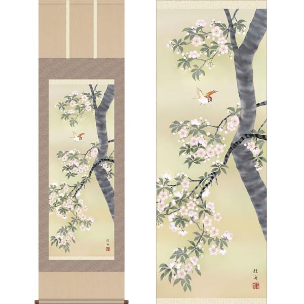 掛軸 桜花に小鳥 長江桂舟 筆 K10665